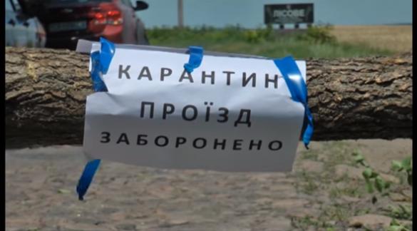 На Черкащині виявили спалах африканської чуми