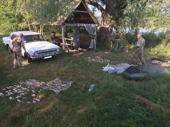 За один день черкаські браконьєри виловили риби на понад 24 тисячі гривень