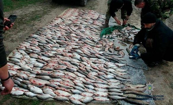 У Черкаській області браконьєри наловили риби на понад 100 тисяч гривень