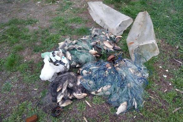 На Черкащині браконьєри наловили карасів на майже 7000 гривень