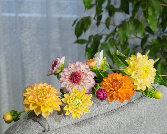 Черкащанка створює квіти, які не відрізнити від справжніх (ФОТО)