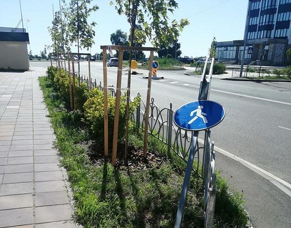 Вандали у Черкасах зламали дорожній знак (ФОТО)