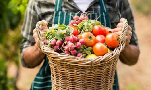 На Черкащині найбільше сільськогосподарських кооперативів