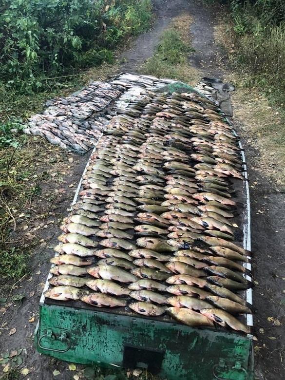 Браконьєри в Черкаській області завдали збитків на понад 60 тисяч гривень (ФОТО)