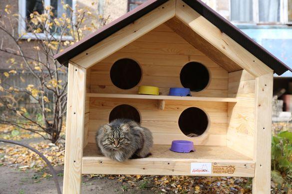 У Черкасах створюють незвичні будівлі для безпритульних котів