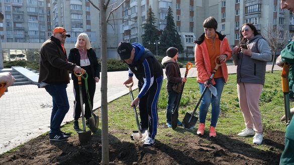 Хороша cправа: у Черкасах в пам'ять про загиблих в АТО на алеї Слави висадили дерева сорту Royal Red