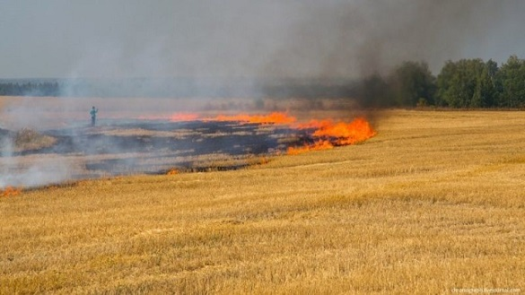 У Черкаській області сталася пожежа на полі