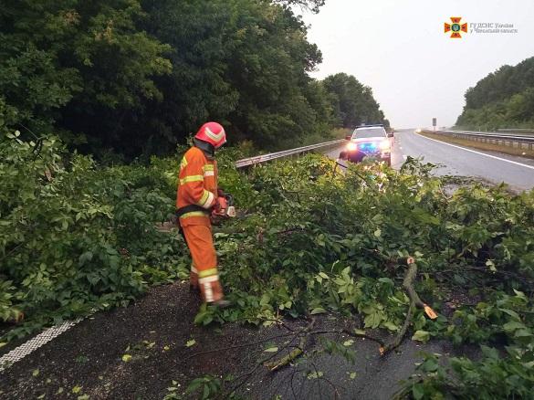За минулу добу рятувальники прибрали з автодоріг Черкащини шість дерев