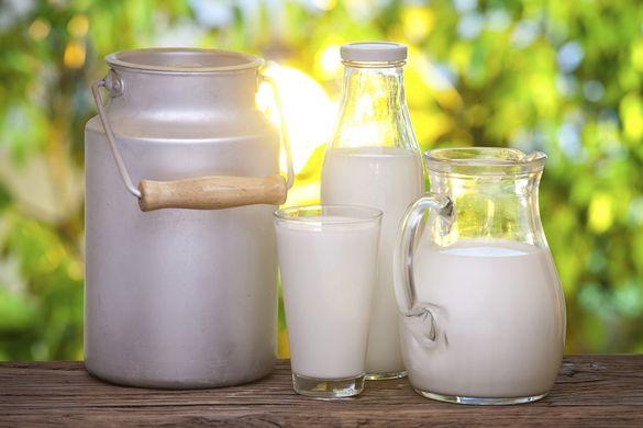 Доїльні апарати та  кооперативи: як черкащани покращують якість молока (ВІДЕО)