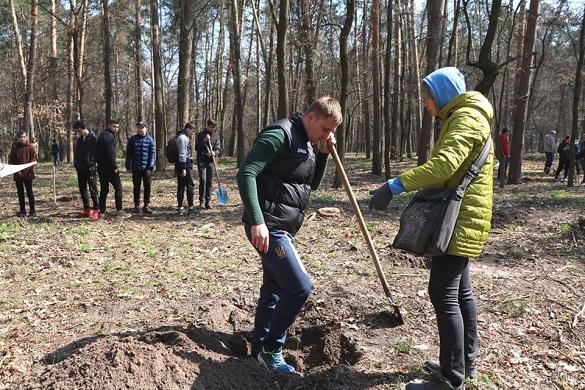 Черкаські парки стануть ще зеленішими: висадили кількасот дерев (ФОТО)