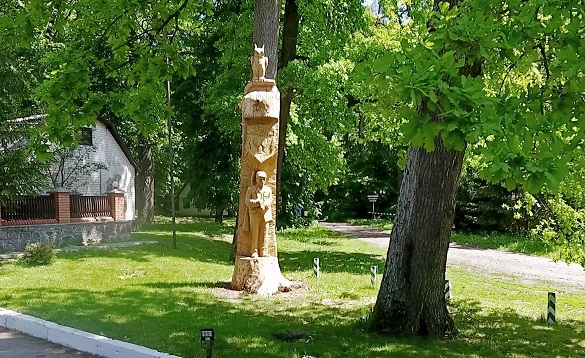 На Черкащині 150-річному дубу дали друге життя