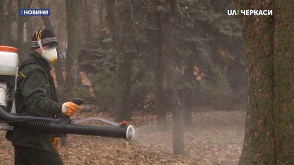 Комунальники готують до зими черкаські парки