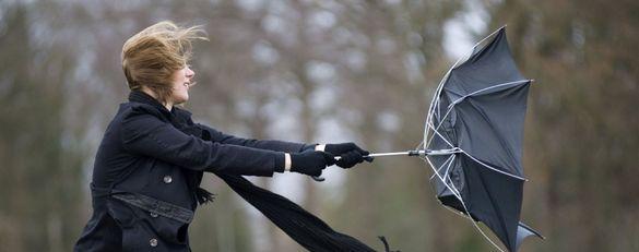 Завтра на Черкащині синоптики прогнозують пориви вітру