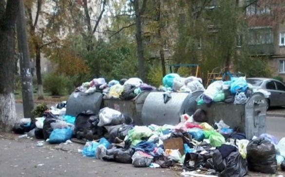 На в'їзді Черкас з сміттєвого майданчика розсипається сміття