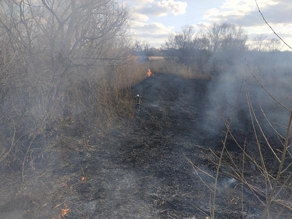 На Черкащині впродовж доби ліквідували три пожежі в екосистемах (ФОТО)