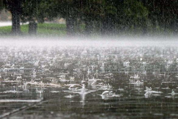Вихідними на Черкащині очікується спад температури та дощ