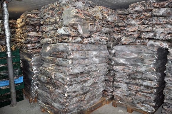 40 тонн риби та незареєстрована зброя: колишній правоохоронець на Черкащині незаконно займався рибним промислом (ФОТО)