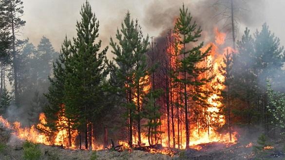 Черкащан попереджають про пожежну небезпеку